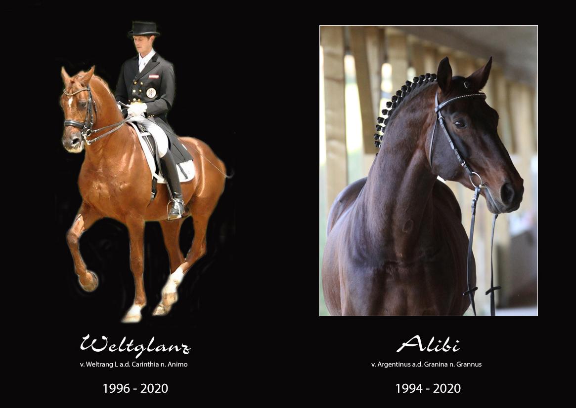 R.I.P. Weltglanz & Alibi